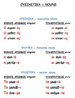 Flashcard for noun endings